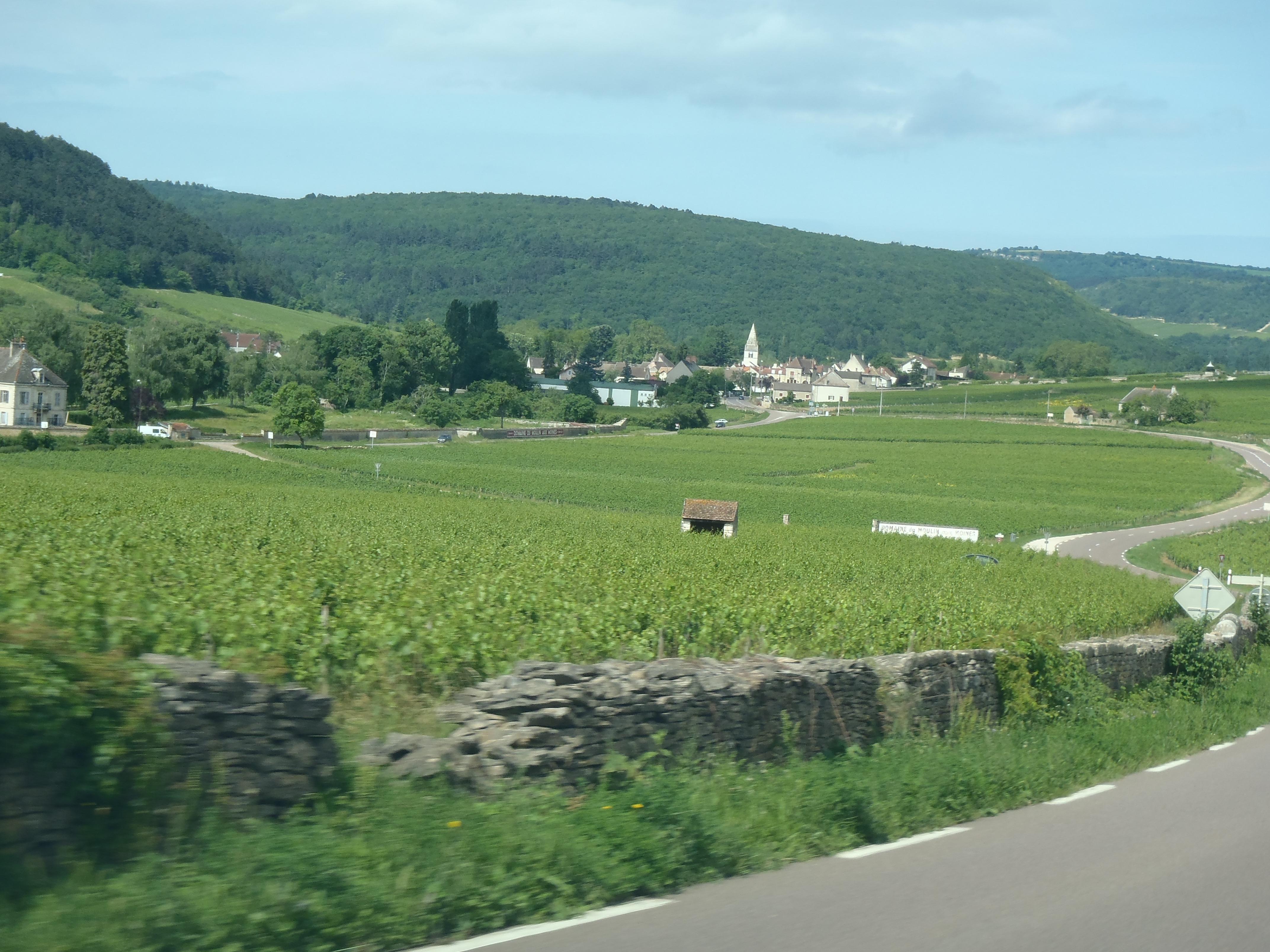 Bourgogne incl. Chablis